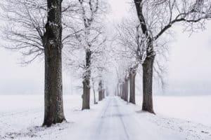 Snowy Road - Snow Removal Idaho Falls