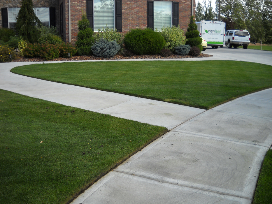 Freshly Cut Lawn - Idaho Falls Lawn Care ... - New Leaf Landscape Design And Maintenance: Idaho Falls Landscaping