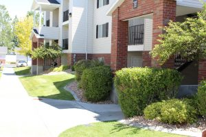 Trimmed and Pruned Plants - Idaho Falls Landscape Maintenance