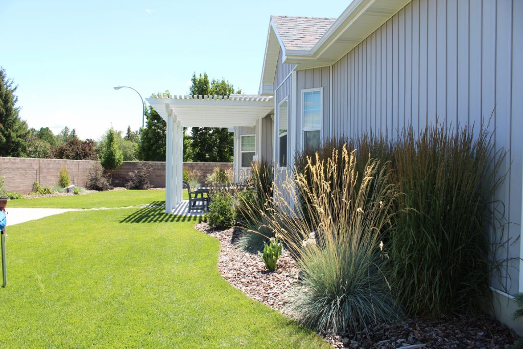 Pruned and Trimmed Plants - Idaho Falls Landscape Maintenance - Pruned And Trimmed Plants - New Leaf Landscape Design And