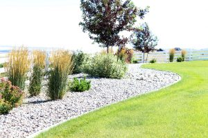 Idaho Falls pruning & trimming