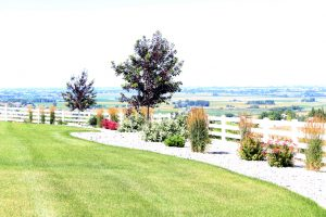 Maintained Lawn - Idaho Falls Landscape Maintenance