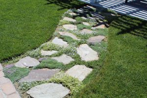 Rock Path Design - Idaho Falls Landscape Maintenance