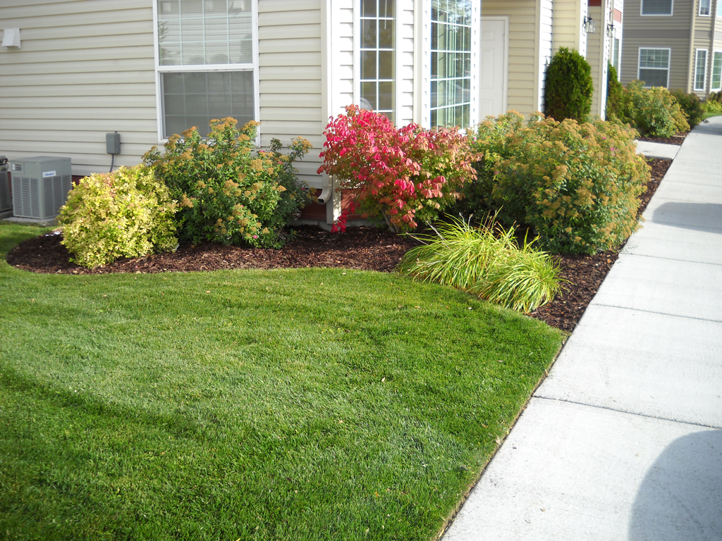 Lawn and Shrubs - Idaho Falls Landscape Maintenance - Lawn And Shrubs - New Leaf Landscape Design And Maintenance: Idaho