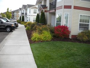 Idaho Falls Custom Landscape Design