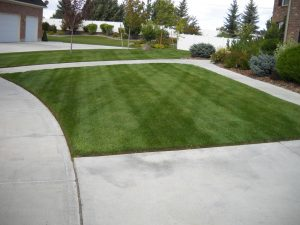 Fresh Cut Lawn - Idaho Falls Lawn Care