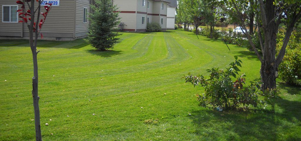 Lawn Care - Idaho Falls Landscape Maintenance