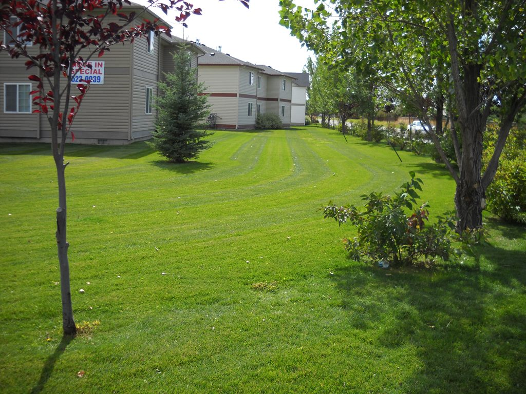 Lawn Care - Idaho Falls Landscape Maintenance - Premier Idaho Falls Lawn Care New Leaf Landscape Design & Maintenance