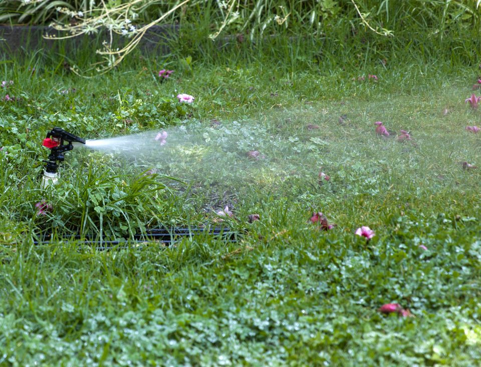 Sprinkler Watering Lawn - Sprinkler Repair Idaho Falls
