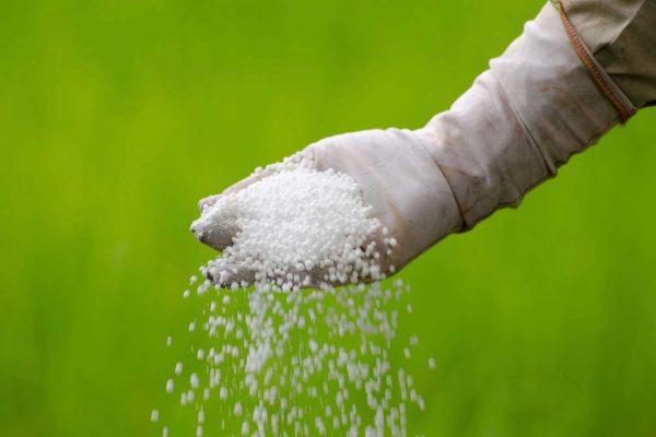 Lawn Fertilizer - Springtime Landscaping Services