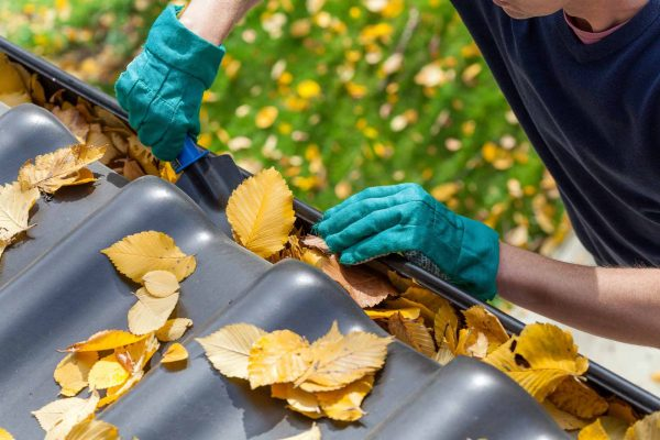 cleaning-leaves-out-of-gutter