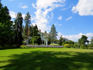 lawn maintenance idaho falls