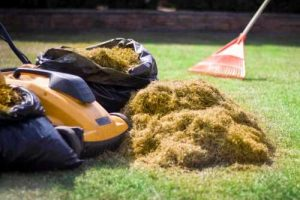 power raking services