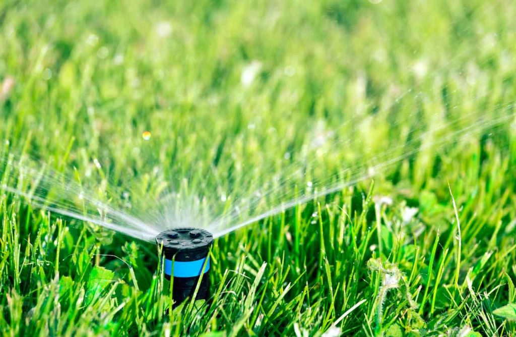 Tiny Sprinkler - Idaho Falls Sprinkler Repair