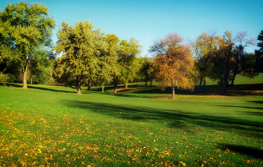 lawn care services idaho falls